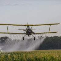 Crop Dusting plane making the final pass in Petrolia, ON