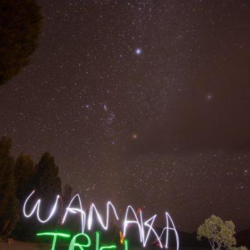 The Wanaka Tree at night by @joegophoto
